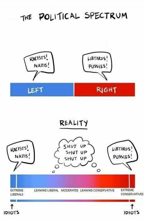 Image result for political spectrum meme