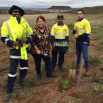 Great to spend #WorldEnvironmentDay with partners @WAParksWildlife with Assistant Minister for the Environment @Melissa4Durack planting rare flora in the Moresby Range in the @NACC_NRM region #PeopleOfNRM #PlacesOfNRM #1000sOfLocalSolutions @NRMRegions