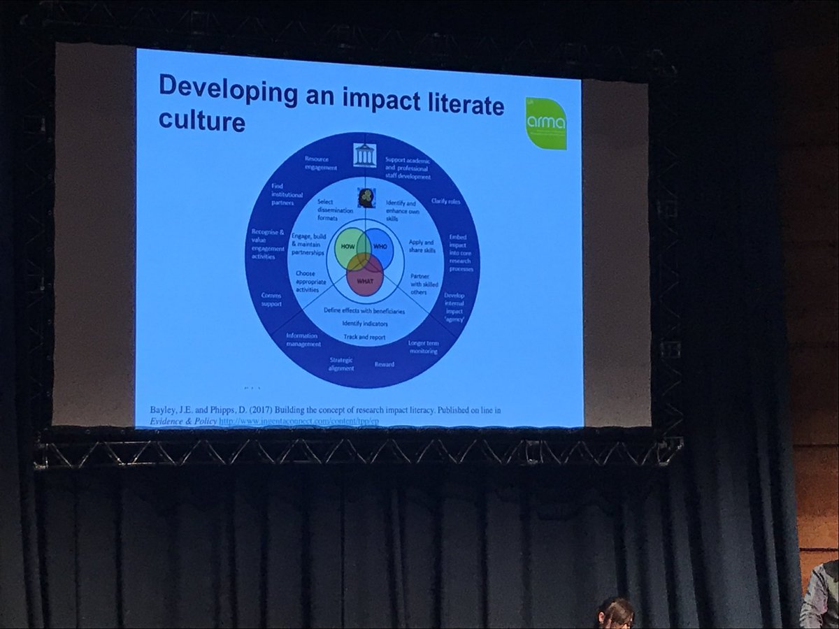 effects of culture on development