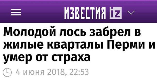 Lufthansa официально извинилась перед украинцами за скандальный видеоролик, снятый в Киеве, - посол Мельник - Цензор.НЕТ 1692