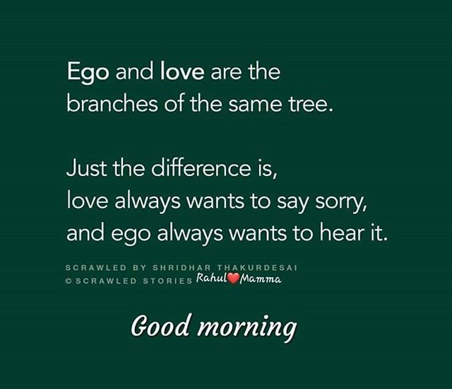 Latest Hd Good Morning Images To Say Sorry Quoteambition