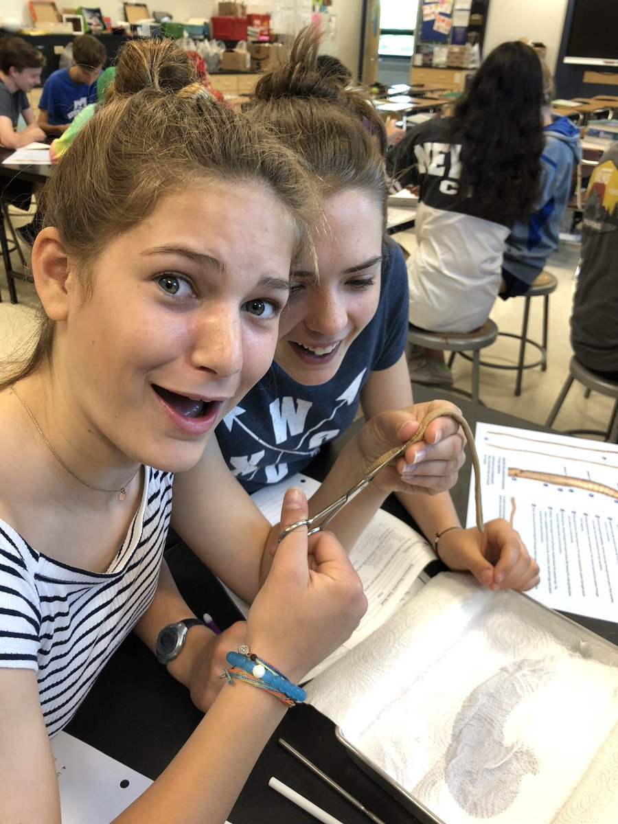 Learning about body systems through earthworm dissection, which takes some technique for sure! <a target='_blank' href='http://twitter.com/GeneralsPride'>@GeneralsPride</a> <a target='_blank' href='https://t.co/jZCn1VUW5R'>https://t.co/jZCn1VUW5R</a>