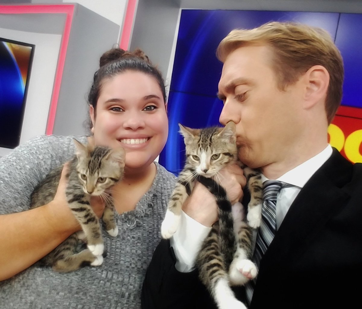 Please: will someone adopt Mork & Mindy? These two kittens from  hav@OCAS_Orlandoe been foster trained and are ready for a nice home. They made their TV debut on  GOO#Fox35D DAY XTRA today. #NanuNanu