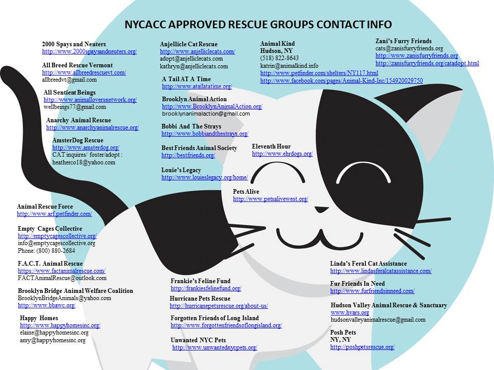 "#NYC &quot;At Risk&quot; List Links   The NYC ACC&#39;s ""At Risk"" list can be found here:   Website:  https:// newhope.shelterbuddy.com/Animal/List  &nbsp;      Facebook:  https://www. facebook.com/ACC.OfficialAt RiskAnimals/ &nbsp; …  …   #NYC #cats    Please RT @meowmiya88 @catherine_riche @urgentpodr @mustlovecatsnyc + more for them!<br>http://pic.twitter.com/zX2EAisccx"