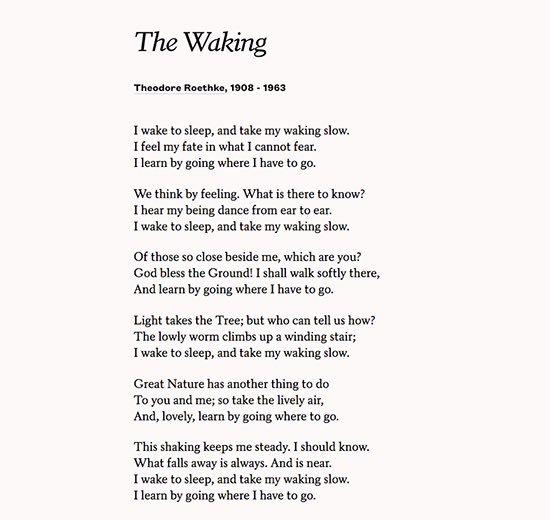"Replying to @holdengraber: ""I wake to sleep, and take my waking slow.""      ~ Theodore Roethke"