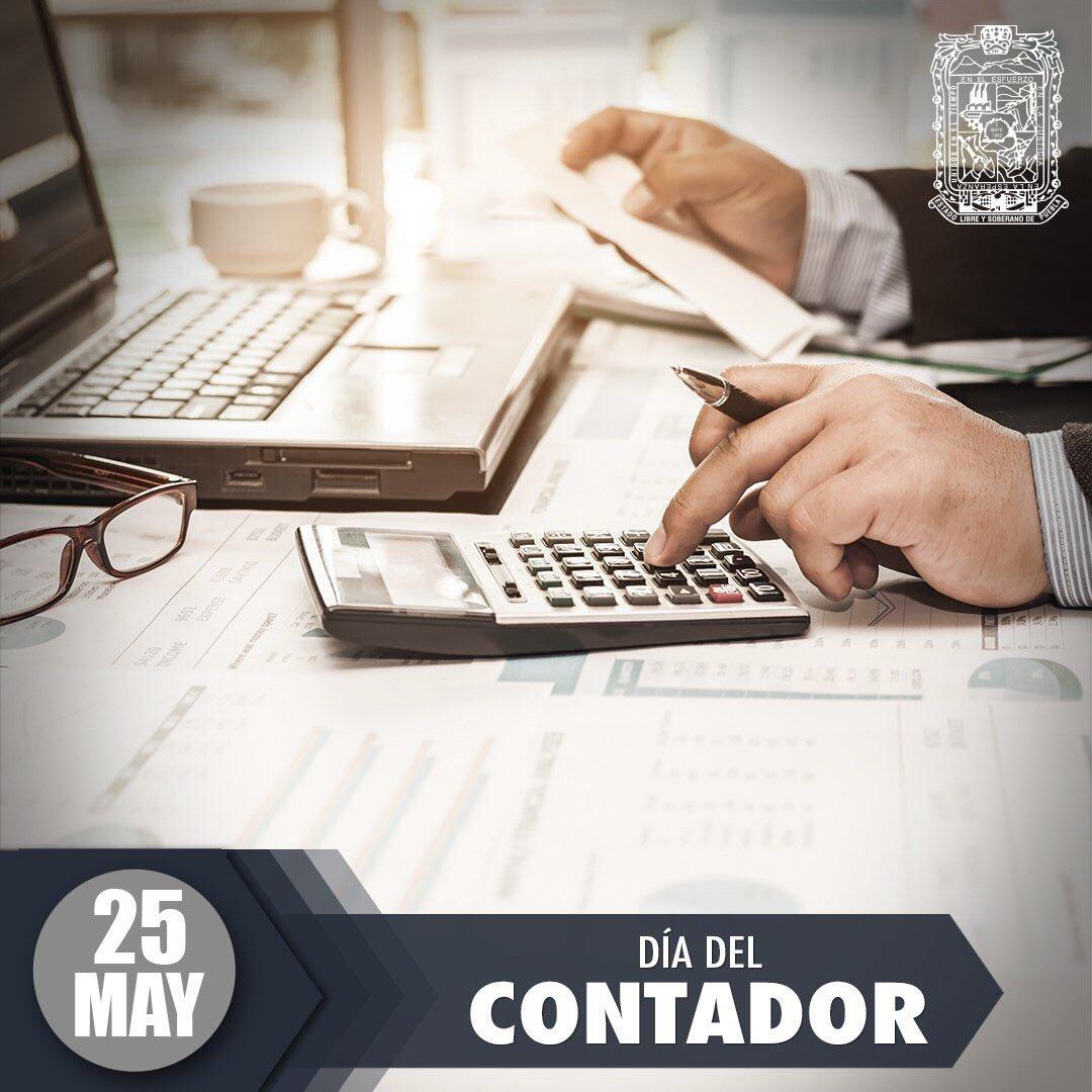 Magnífico Habilidades Profesionales Para Contadores Reanudar Foto ...