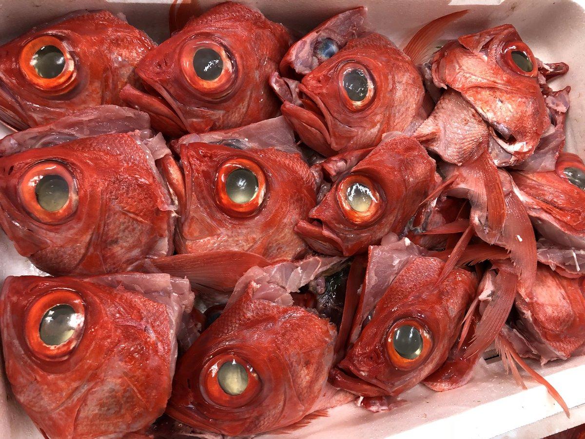 煮付けにするから… っと金目鯛の頭お買い上げ  ありがとうw