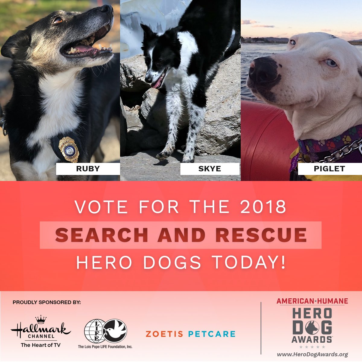 Read their stories today and vote for your favorite four-legged heroes  through July 11th at 12pm PT: http://www.herodogawards.org/vote  pic.twitter.com/ ...