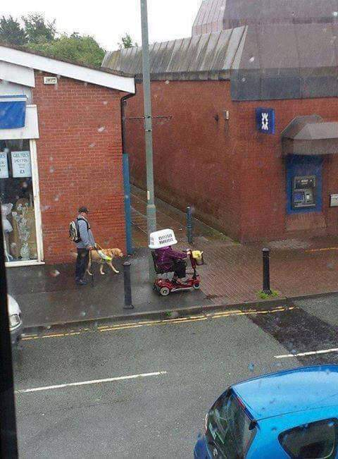 To my worldwide followers. Here is the best British photo I&#39;ve seen this week. <br>http://pic.twitter.com/tzm5jYvNtX