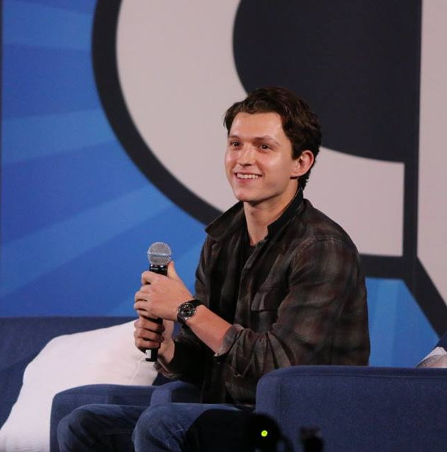 At Comicpalooza Tom Holland said he has a new movie that he can't revelead yet.