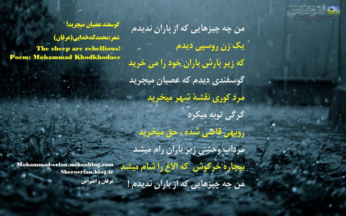 #گوسفندعصیان_میچرید! #The_sheep_are_rebellious Poem: Mohammad Khodkhodaee من چه چیزهایی که از #باران ندیدم یک #زن_روسپی دیدم که زیر بارش باران خود را می خرید گوسفندی دیدم که عصیان میچرید #مردکوری نقشۀ شهر میخرید #گرگی توبه میکرد روبهی #قاضی شده ، حق میخرید #مرداب_وحشی زیر ... ...