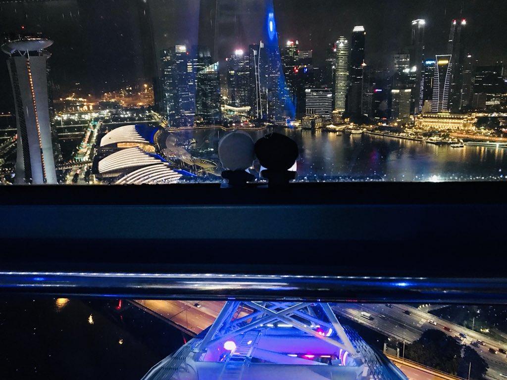 【純黒聖地巡礼@シンガポール】 観覧車の頂上からの景色です。お納め下さい🙇♂️ 貸切状態だったから「世界はあなたの色になる」流したら涙止まらん😭
