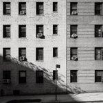 Image for the Tweet beginning: Side Street Manhattan: day 3127