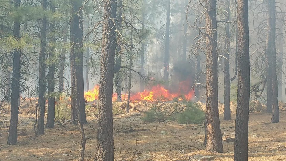 NEW: A couple of campsites have been evacuated for a 3-acre wildfire north of Highway 260. There is no danger to the Forest Lakes community at this time. Photos courtesy Forest Lakes Fire Dept.