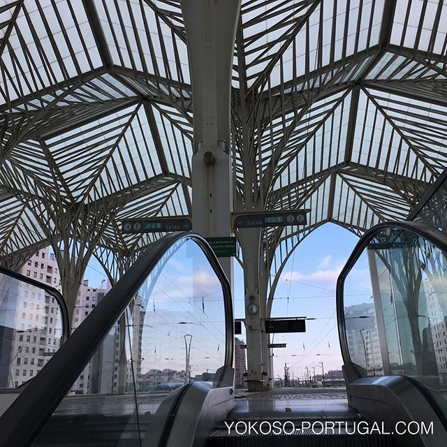 test ツイッターメディア - 椰子の木をイメージしたオリエンテ駅。 #リスボン #ポルトガル https://t.co/hjCvvB16aB