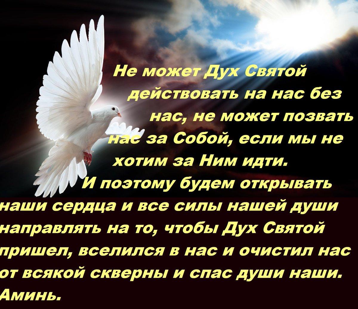 Картинка день святого духа