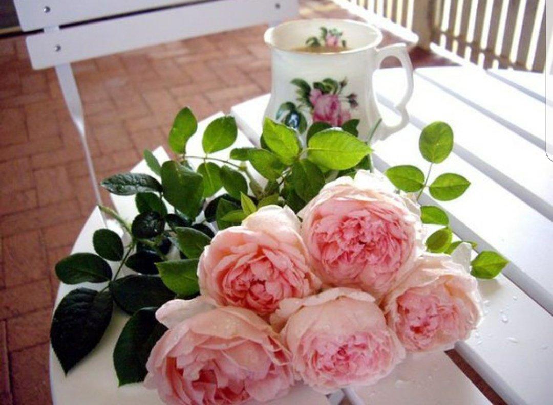 пионы букеты фото с пожеланием доброе утро название полотна джоконда