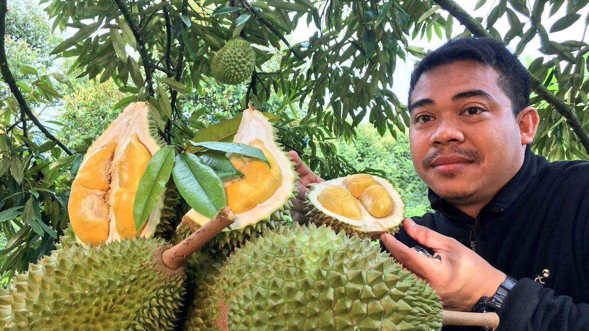 Jabatan Pertanian Malaysia в Twitter Pertanian Adalah Perniagaan
