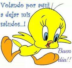 Carlos De Belu Ar Twitter Buenlunes Y