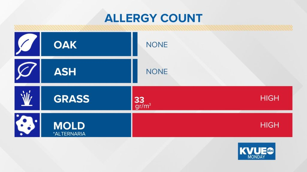 austin allergies on twitter did you take your allergy medication