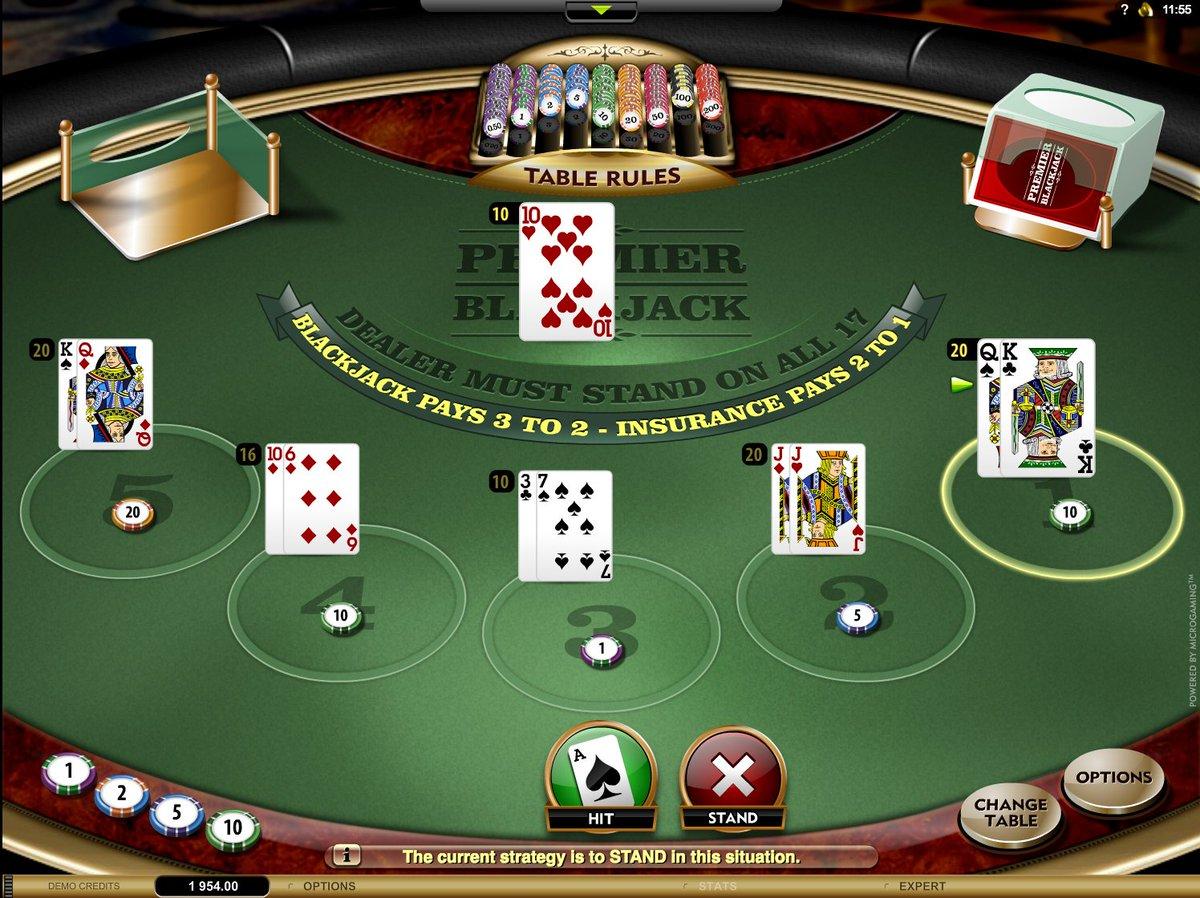 Мопс казино зеркало