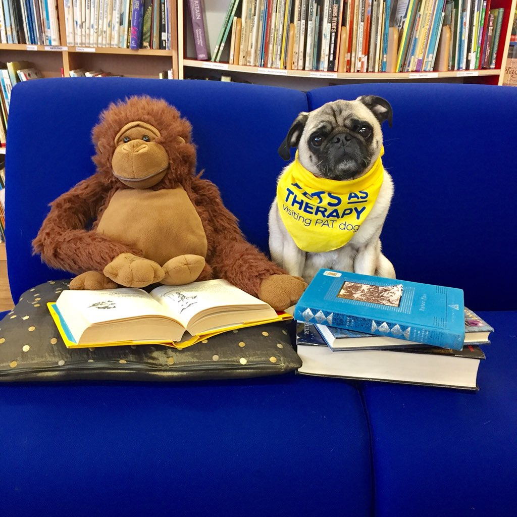 Encouraging the little peeps to read, through @PetsAsTherapyUK READ2DOGS scheme, is a true pleasure. Forming a positive association with reading is an essential tool to access knowledge and information for managing life itself &amp; for pure pleasure. Happy #NationalVolunteerWeek  <br>http://pic.twitter.com/2Qm7CvXkZK