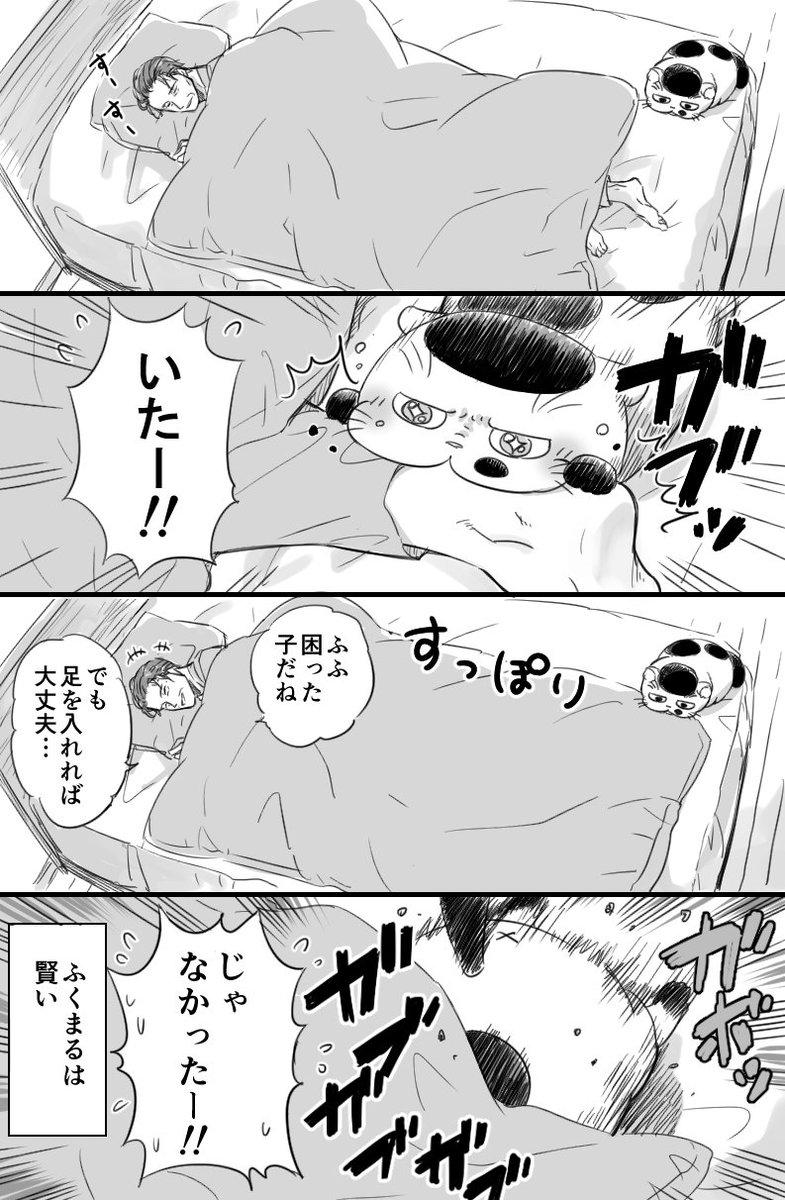 【おじさまと猫の番外編】 魅惑のおみ足