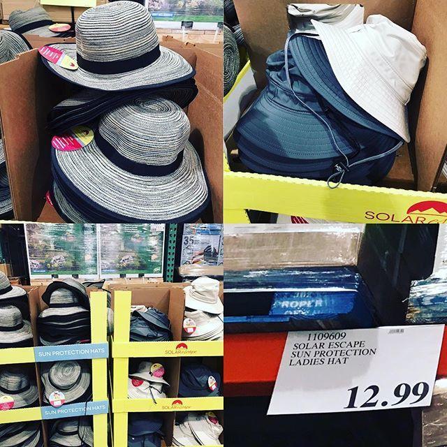 76085dc97bd88  solarescape men s and women s  hats only  12.99!  costcodeals  costco   sunhat https   ift.tt 2L8jONG pic.twitter.com GgGhxgOnKx