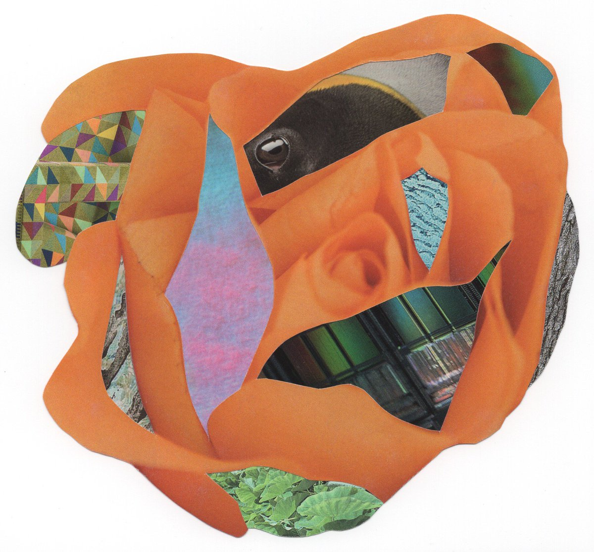 Scratch The Surface  10 pieces of paper. This handmade collage is on its way to Moscow where it will be planted in August alongside flora from collage artists from around the globe   Want to help grow the garden?  https:// bit.ly/2srJqx5  &nbsp;    #collagetheworld #thecollagegarden<br>http://pic.twitter.com/VhL7wWBhW7