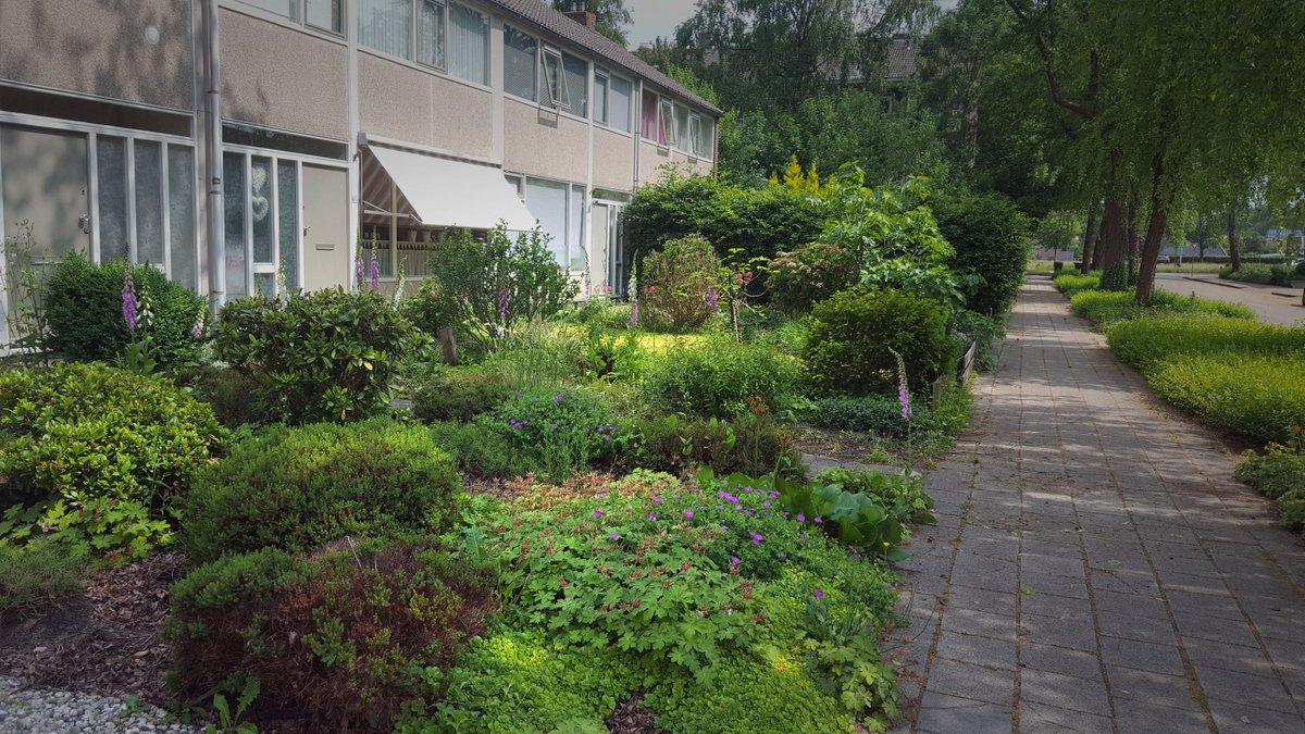 Tijd Voor Tuin : Lente het is tijd voor groene vingers bouwbakkie