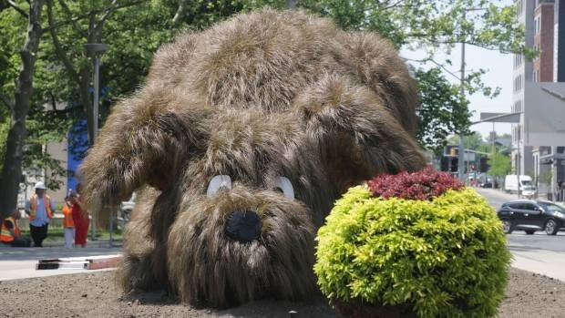 Meet Ralph, a dog statue made of plants that will be playing outside Hamilton's city hall this summer: https://t.co/ZGL9x48hlZ