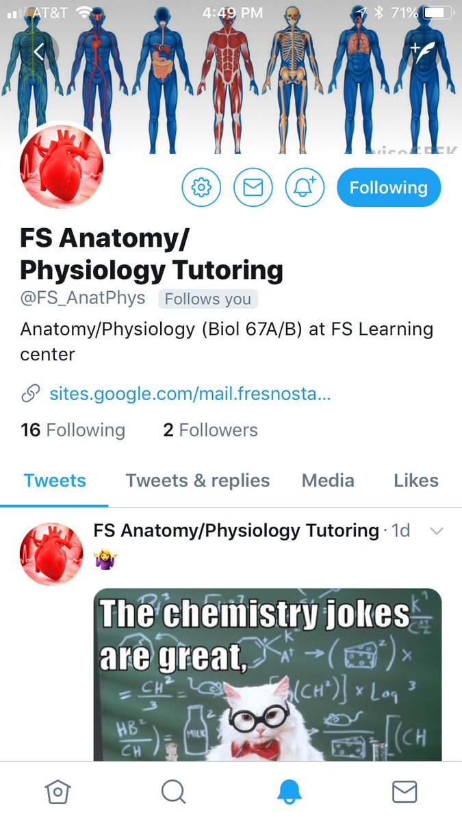 Tony Losongco On Twitter Looking For Some Resources On Anatomy And