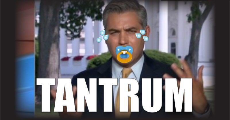 Image result for Jim Acosta temper tantrum