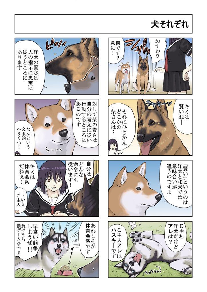 #世界の終わりに柴犬と #柴犬 #4コマ漫画 #漫画 世界の終わりに柴犬と 旅する話 62