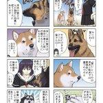 【漫画】犬も性格それぞれ。洋犬と和犬の賢さの違いとは…?アホっぽいハスキーが可愛いw