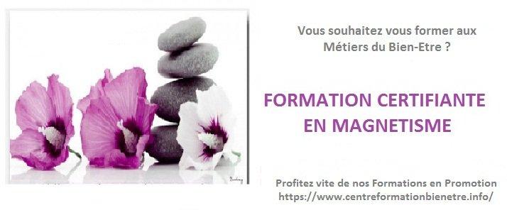 Devenez #Praticien-ne Certifié-e en #Magnétisme #formation en e-learning...