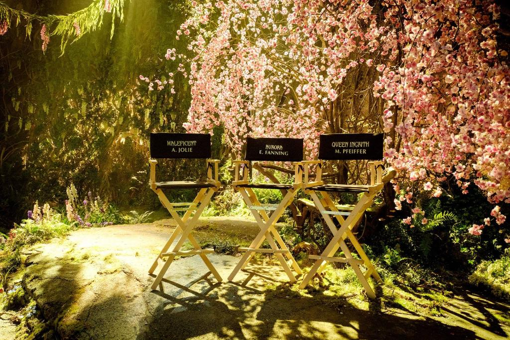 Behold... #Maleficent2, starring Angelina Jolie, Elle Fanning, and Michelle Pfeiffer, is now in production... 🌸✨