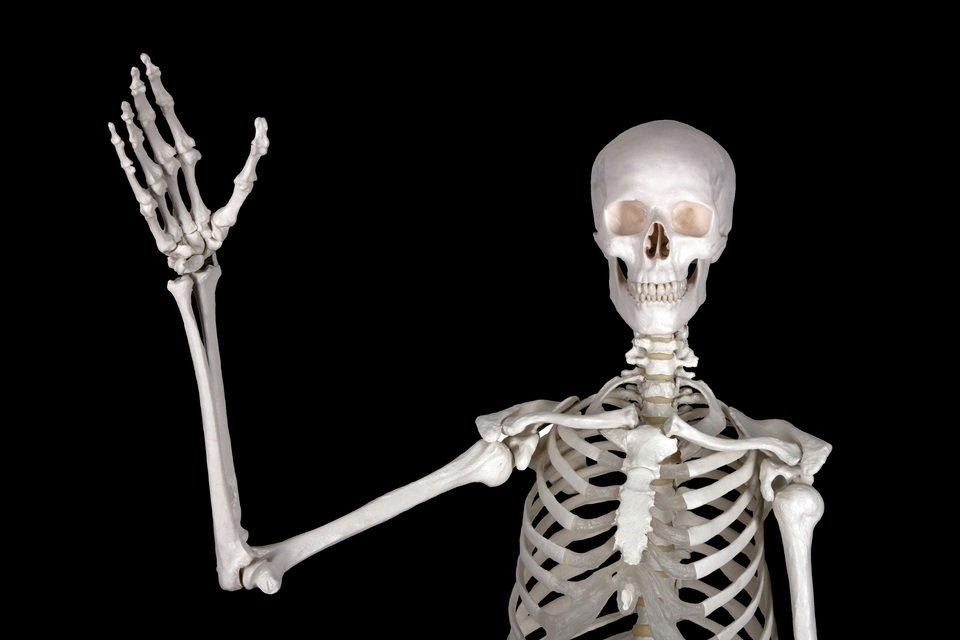 Смешная картинка, скелет в картинках