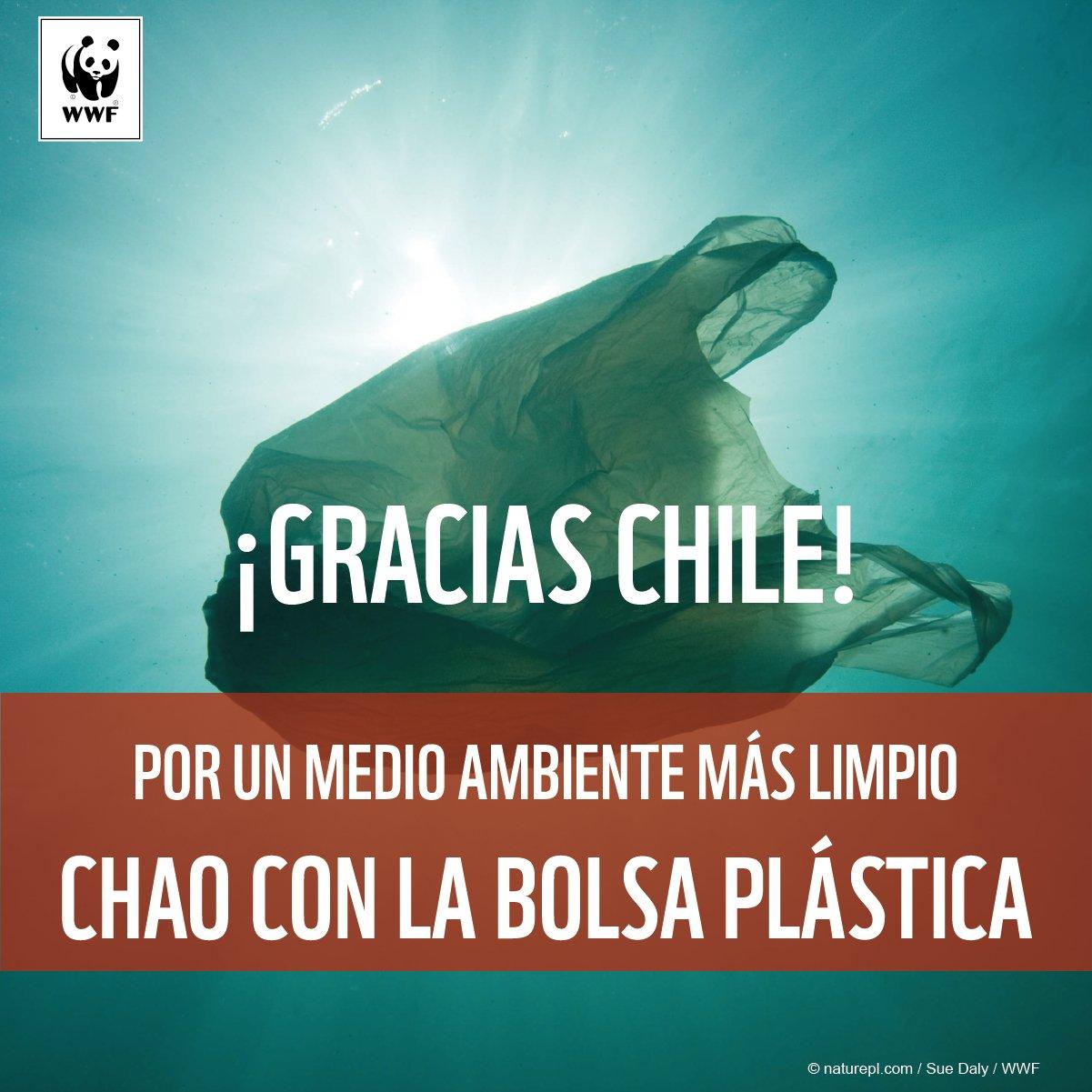 e59939925 WWF Chile no Twitter:
