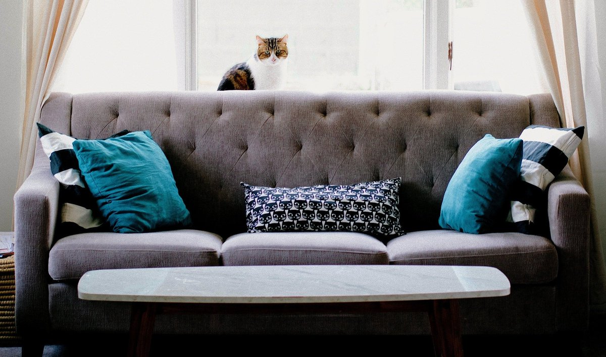 ... Shipping Easy To Assemble Couches And Other Furniture To Your Door U2014  But Are They Worth It? We Broke Down The Top 8 #modular Sofa Companies: ...