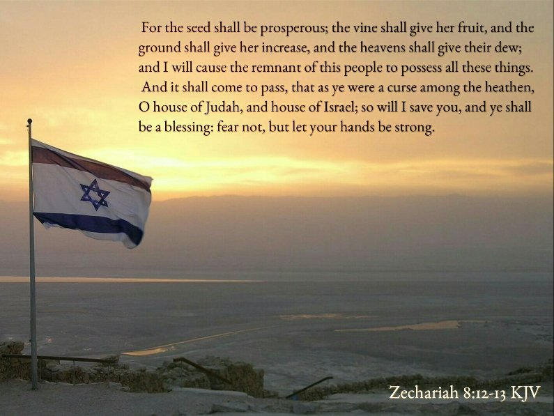 """Bible Verses KJV on Twitter: """"Zechariah 8:12 KJV For the seed shall be prosperous; the vine shall give her fruit, and the ground shall give her increase, and the  heavens shall give"""