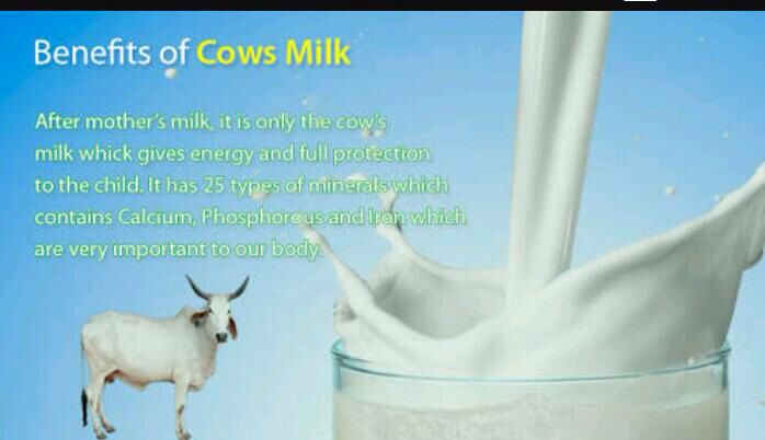 World Milk Day - 1st June