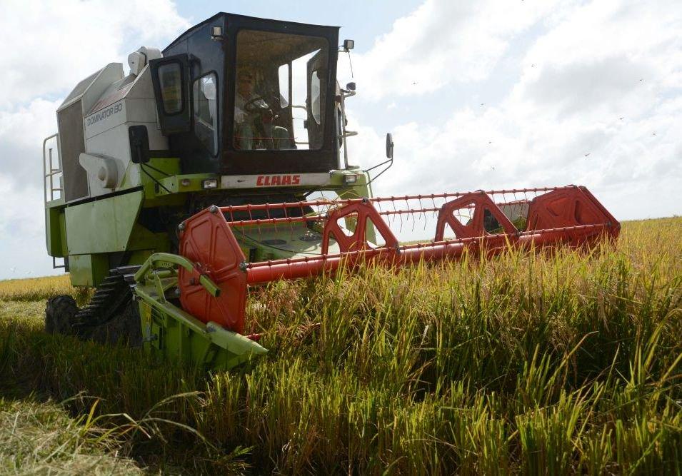 Agricultura cubana asume programas para sustituir importaciones
