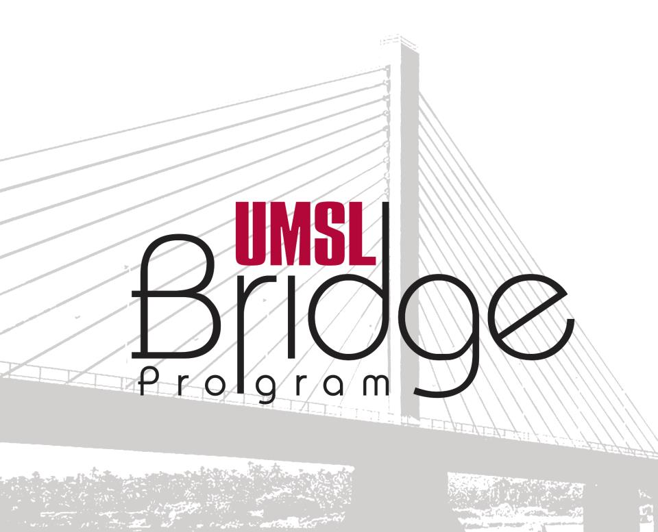 Image result for umsl bridge summer academy