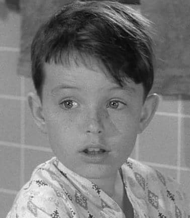 Happy 70th birthday to Jerry Mathers... as the Beaver.