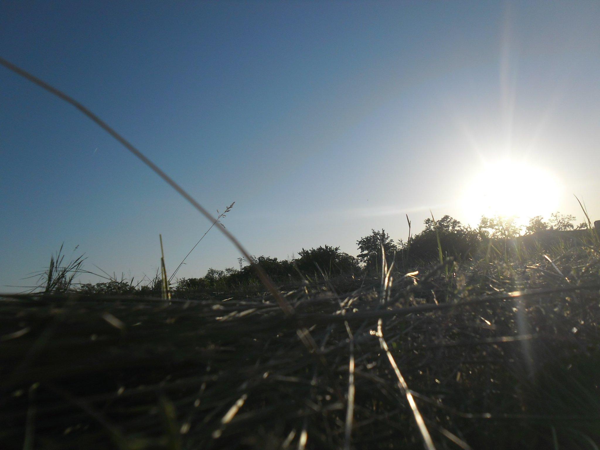 просто, выйти как сфотографировать солнце с лучами на зеркалку дроздов самых