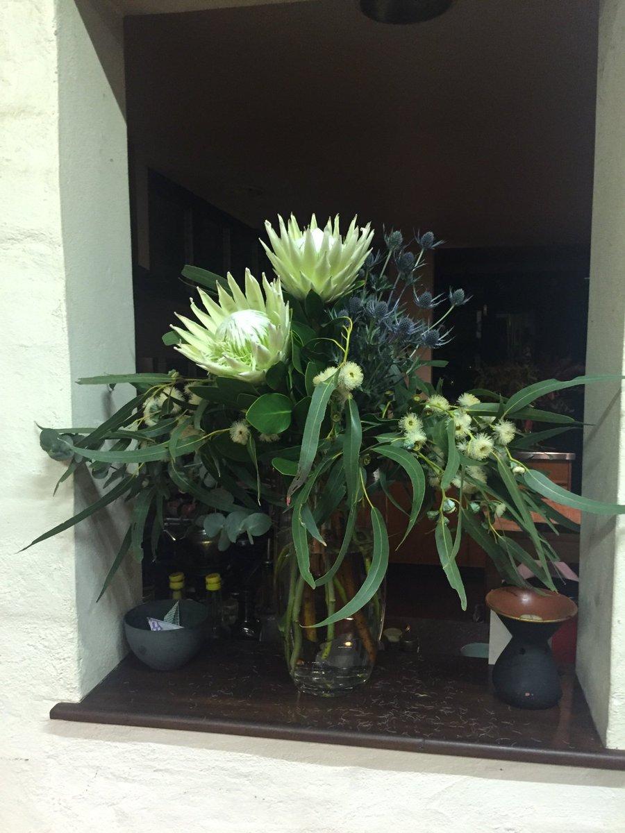 Michael mobbs on twitter king protea sea holly and white michael mobbs on twitter king protea sea holly and white flowering gum given to me last night by a friend beauty mightylinksfo
