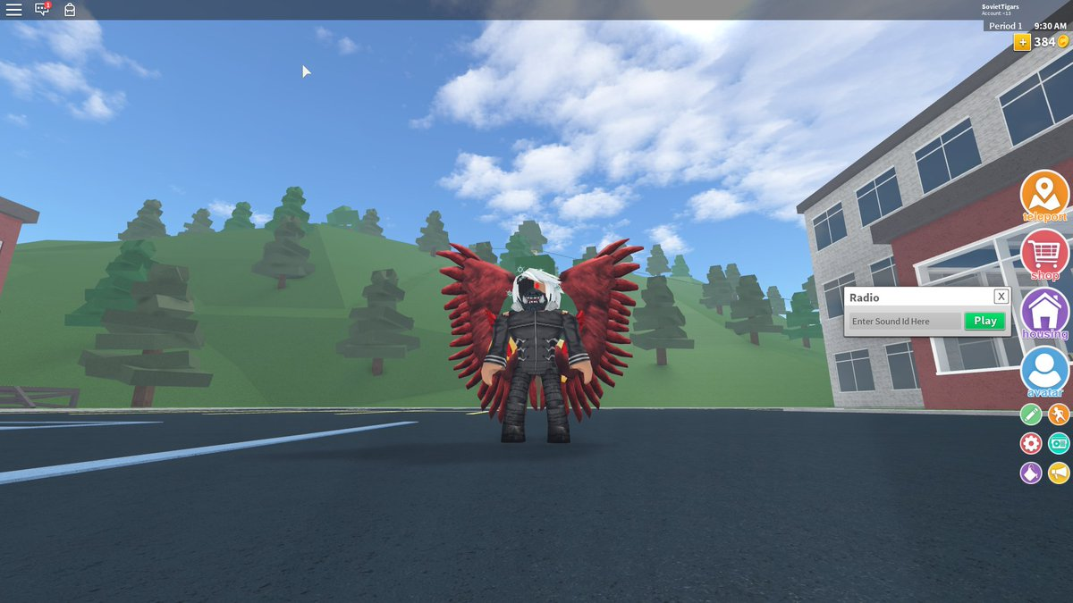 Roblox With Anime In A Nutshell