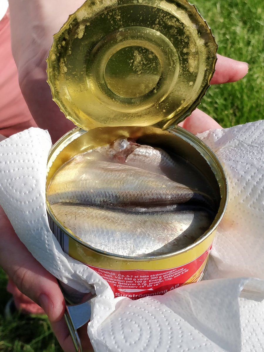 surströmming hashtag on Twitter on available online, person ordering online, purchase online, listen online, call online, teach online, pay online, give online, ladies online, join online, shop online, people buying online, register online, invest online, save online, research online, order online, think online, cheapest online, meet online,