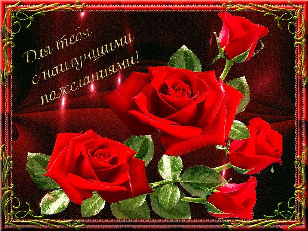 Пожелания открытки с розами